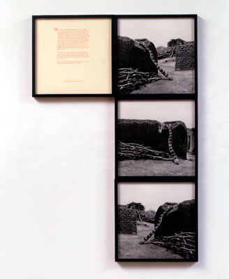 Installation view of the Africa series showing framed images with text