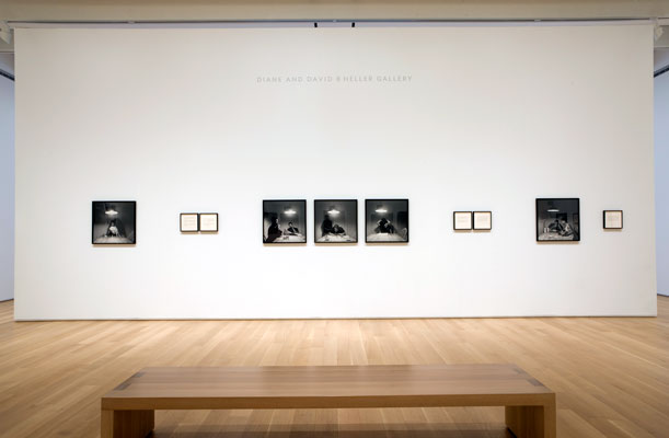 Installation view of the Kitchen Table series