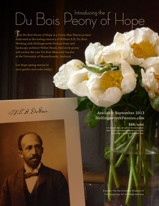 Poster announcing the Du Bois Peony of Hope wtih image of beautiful white peony
